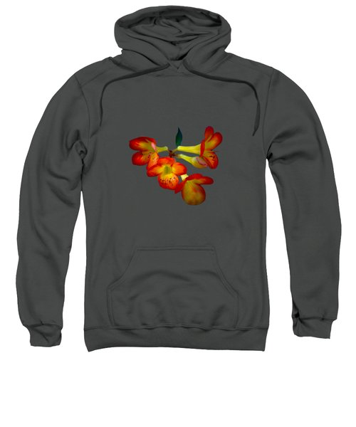 Color Burst Sweatshirt