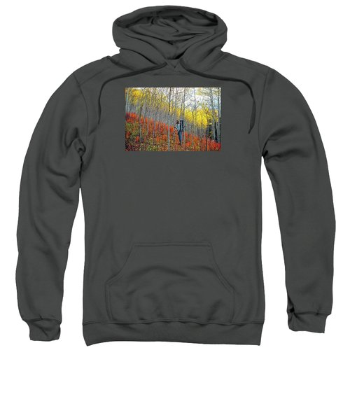 Color Fall Sweatshirt