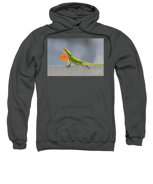 Colorful Carolina Anole Lizard Sweatshirt