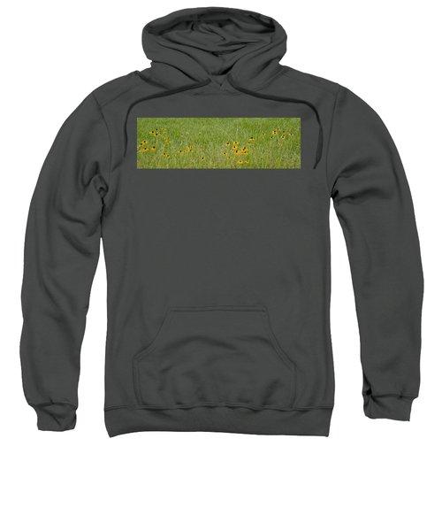 Colorful Field Sweatshirt