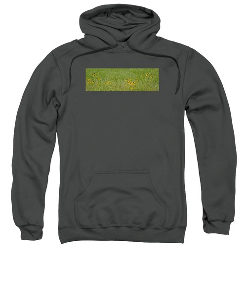 Colorful Field Sweatshirt