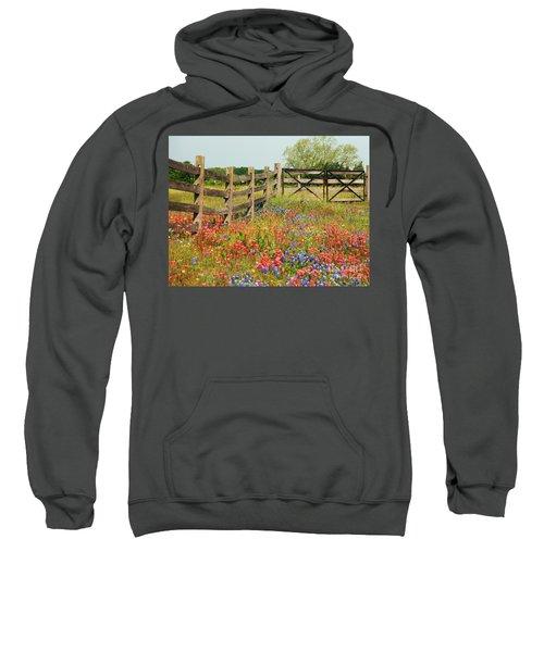Colorful Gate Sweatshirt