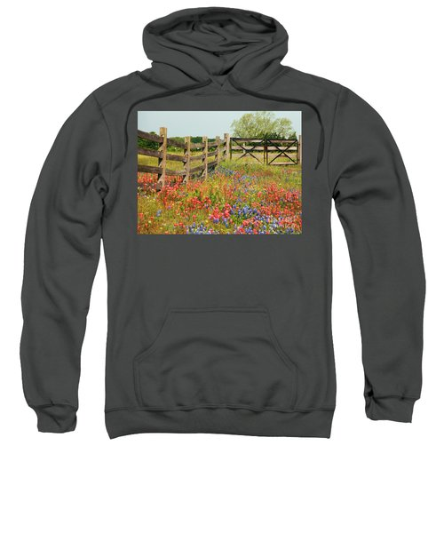 Colorful Gate Sweatshirt