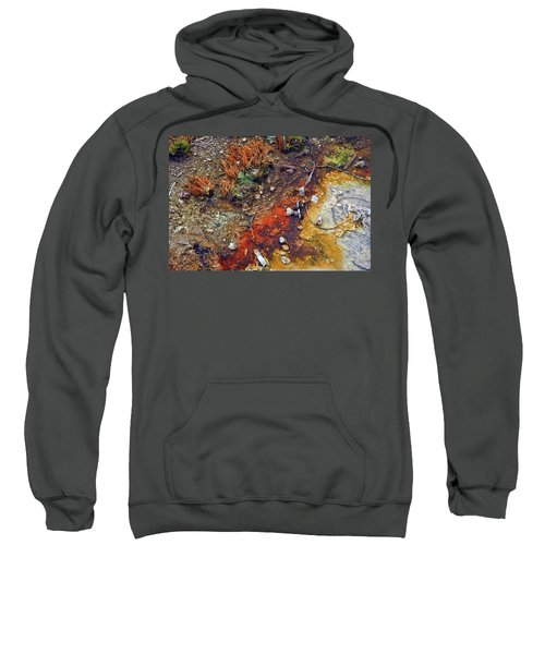 Colorful Hot Pool Sweatshirt