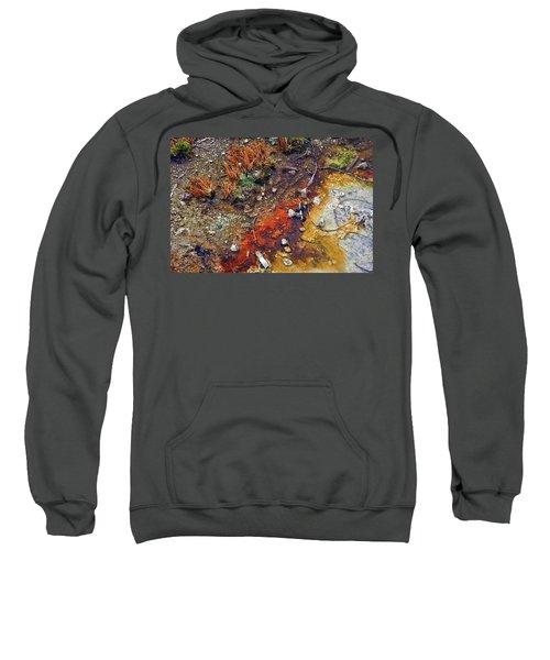 Colorful Hot Pool Sweatshirt