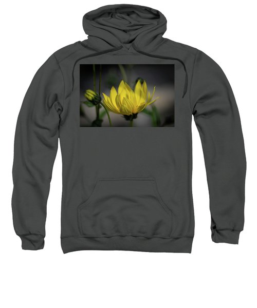 Colour Of Sun Sweatshirt