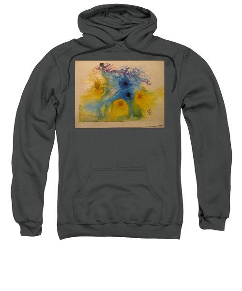 Colourful Sweatshirt