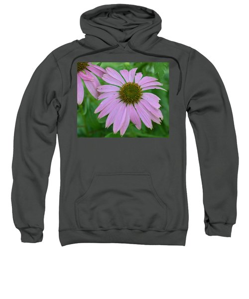 Coneflower Sweatshirt