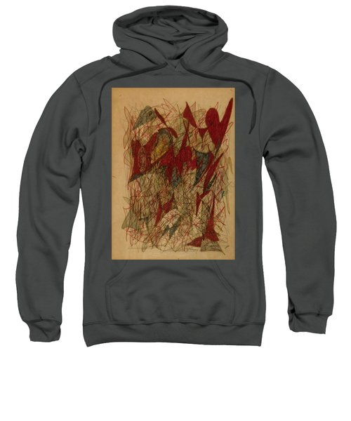 Conglomerate Synthesis  Sweatshirt