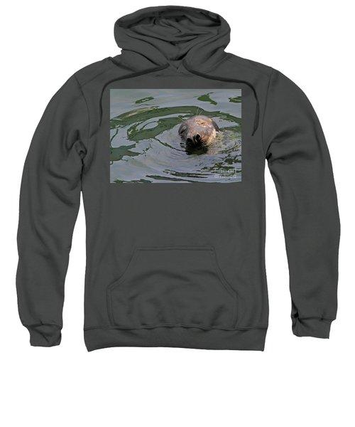 Contentment Sweatshirt