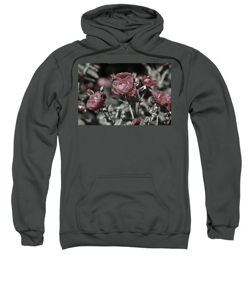 Copper Rouge Rose In Almost Black And White Sweatshirt