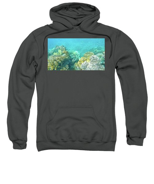 Sweatshirt featuring the photograph Coral by Debbie Cundy