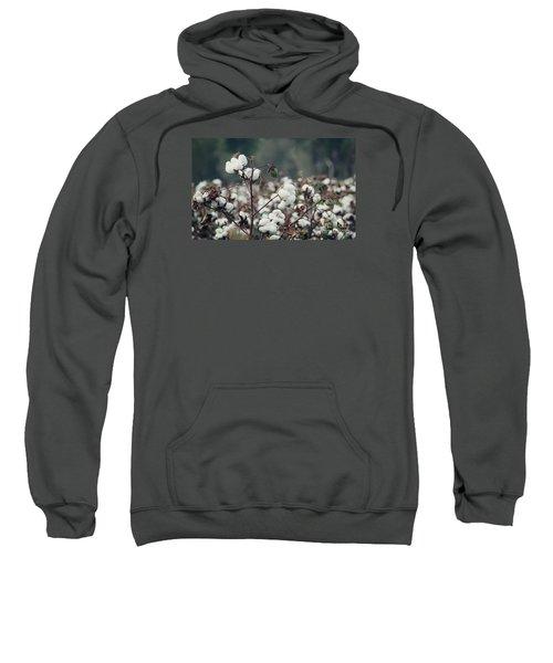 Cotton Field 5 Sweatshirt