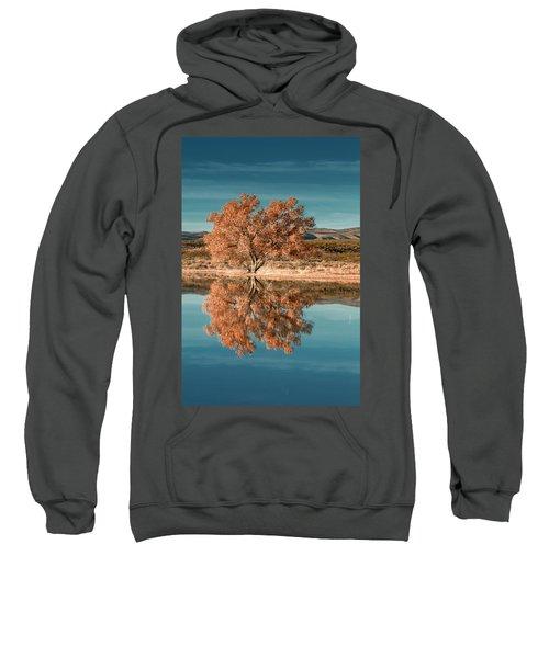 Cotton Wood Tree  Sweatshirt