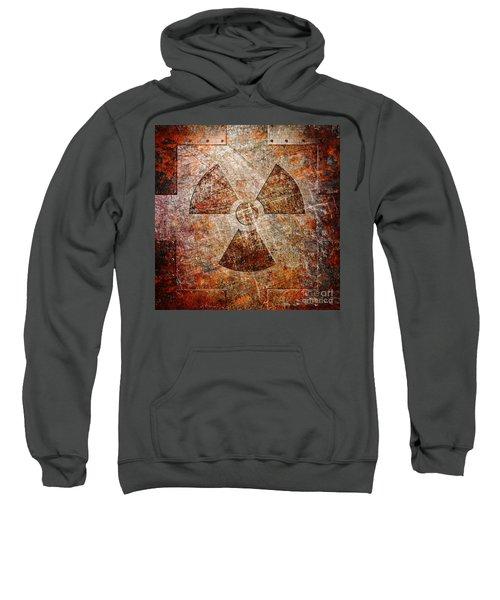 Count Down To Extinction Sweatshirt