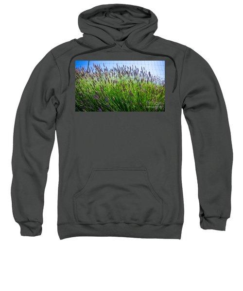 Country Lavender II Sweatshirt