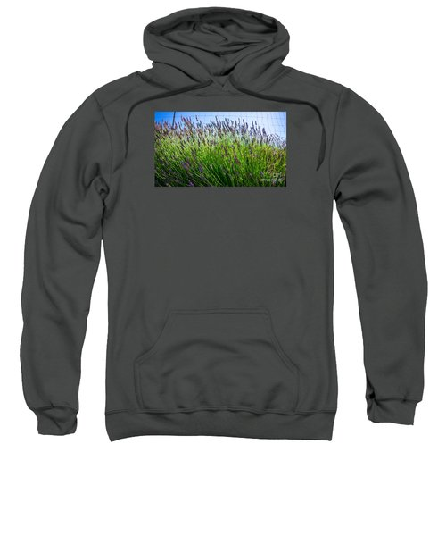 Country Lavender II Sweatshirt