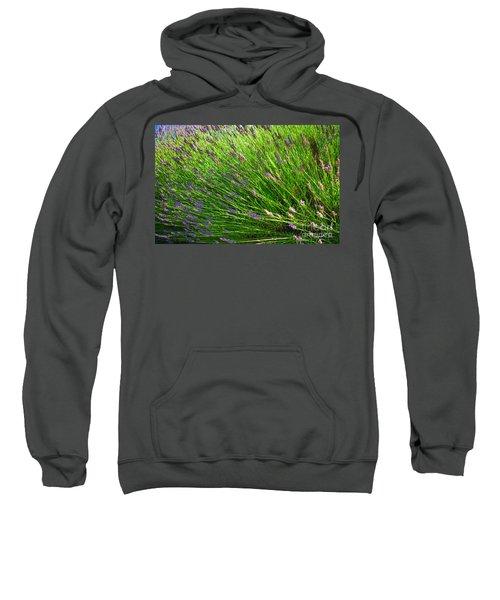 Country Lavender Vi Sweatshirt