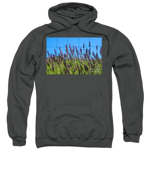 Country Lavender Vii Sweatshirt