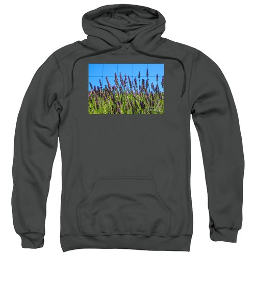 Country Lavender Vii Sweatshirt