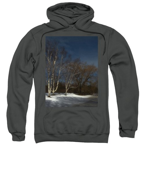 Country Roadside Birch Sweatshirt