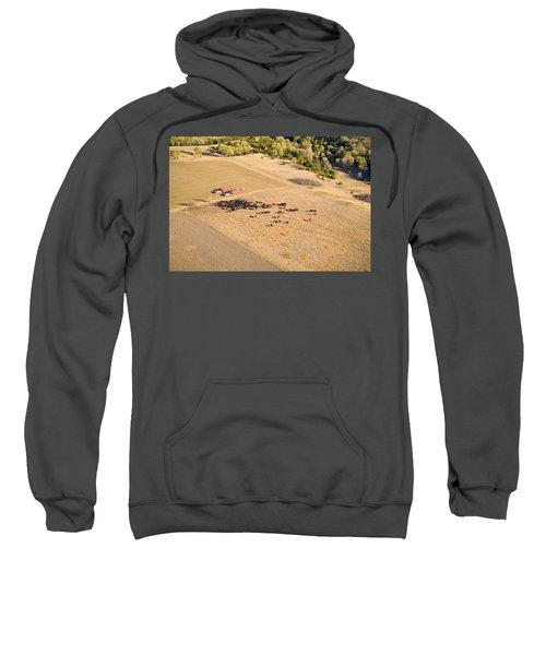 Cows And Trucks Sweatshirt