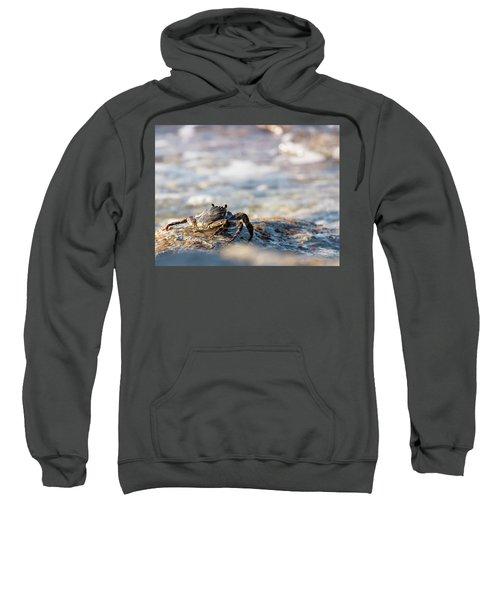 Crab Looking For Food Sweatshirt
