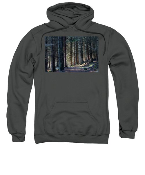 Craig Dunain - Forest In Winter Light Sweatshirt