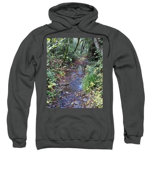 Creek On Mt Tamalpais 2 Sweatshirt