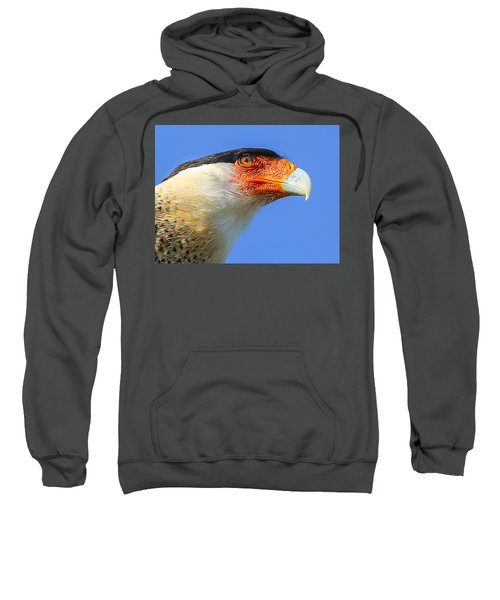 Crested Caracara Face Sweatshirt