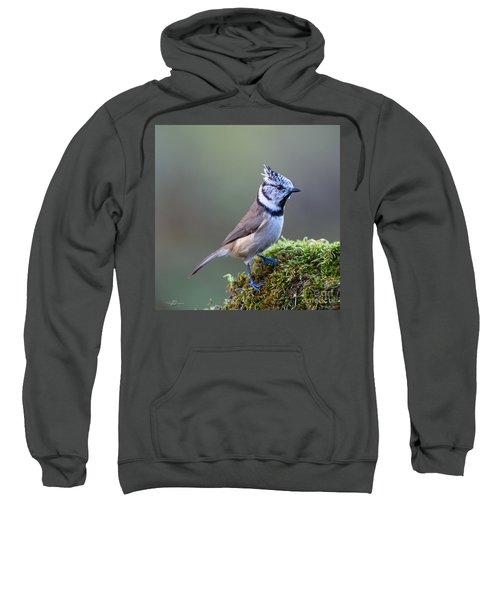 Crested Tit Sweatshirt