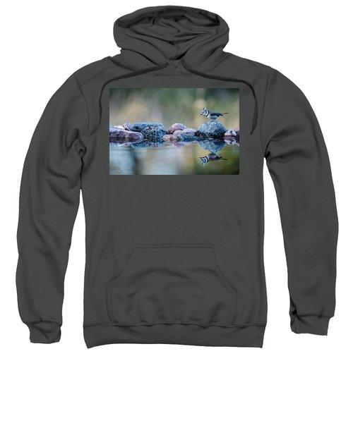 Crested Tit's Reflection Sweatshirt