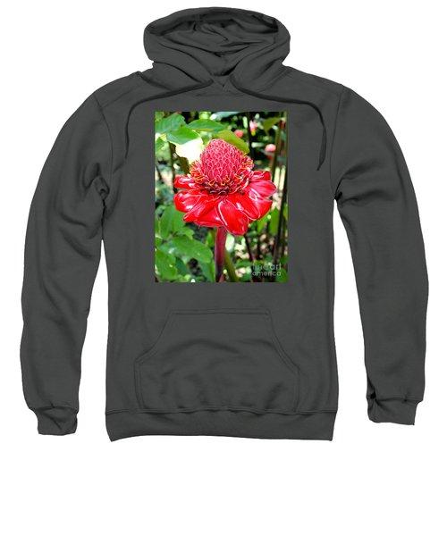 Crimson Bloom Sweatshirt