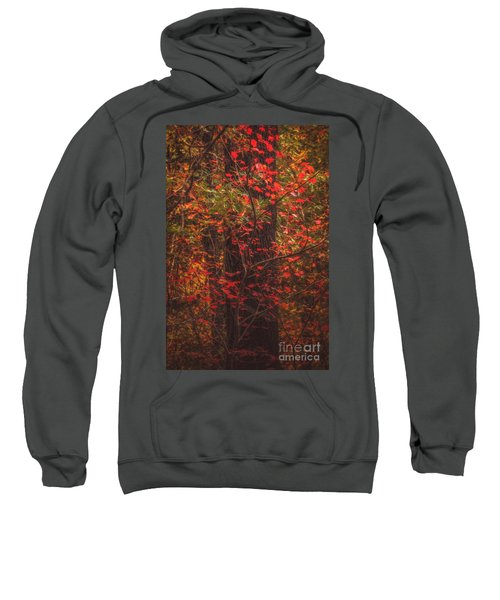 Crimson Fall Sweatshirt