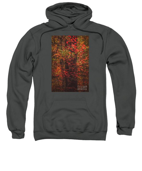 Crimson Fall Sweatshirt