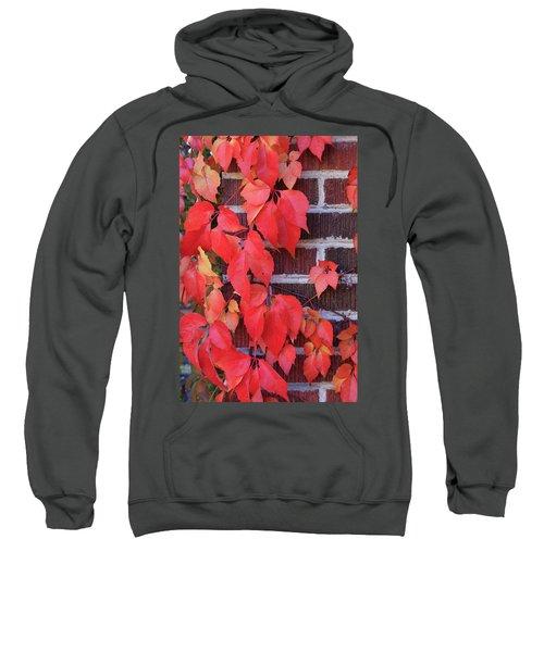 Crimson Leaves Sweatshirt