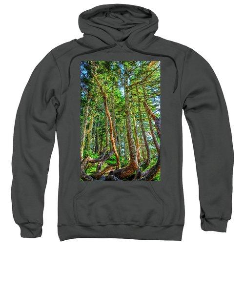 Crooked Trees Of Mt Roberts Sweatshirt