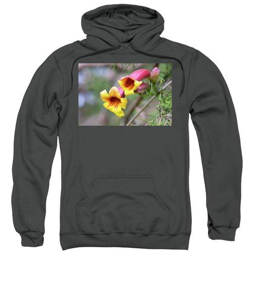 Crossvines  Sweatshirt