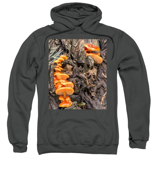 Crowded Living Sweatshirt