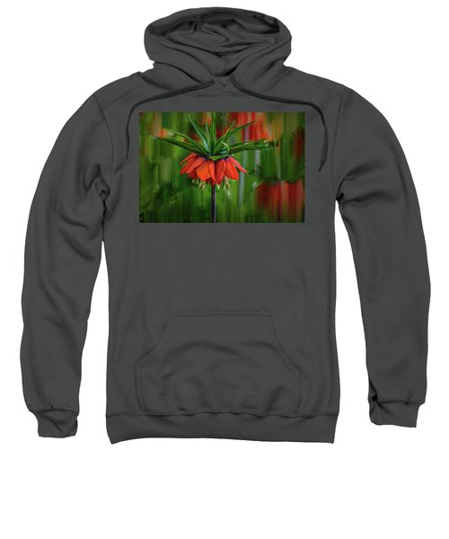 Crown-imperial Abstract #h5 Sweatshirt