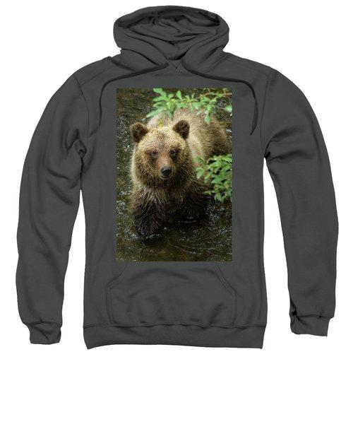 Cubby Sweatshirt