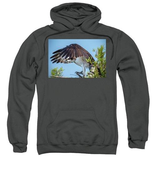 Daddy Osprey On Guard Sweatshirt
