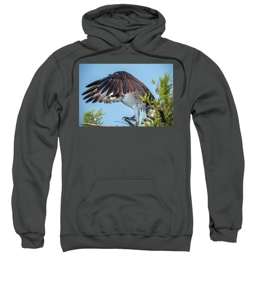 Daddy Osprey On Guard Sweatshirt