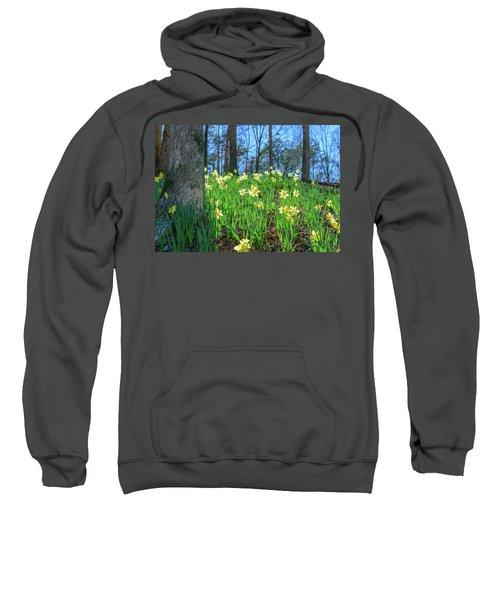 Daffodils On Hillside 2 Sweatshirt