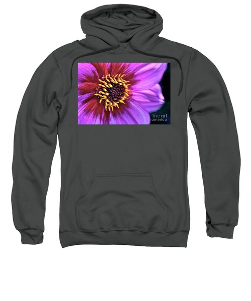 Dahlia Flower Portrait Sweatshirt