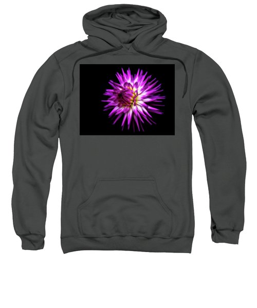 Dahlia Starburst Sweatshirt