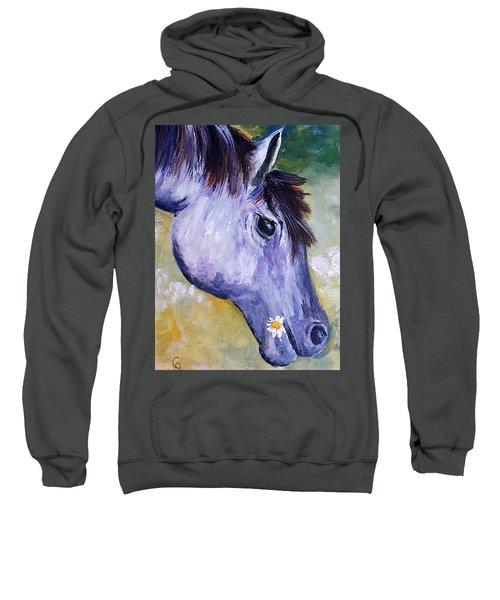 Daisy The Old Mare     52 Sweatshirt