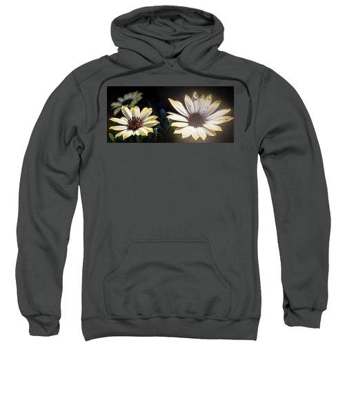 Daisydrops Sweatshirt
