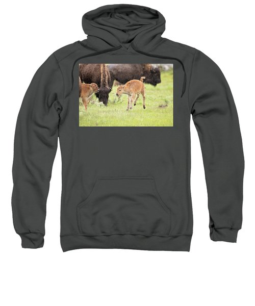 Dance In The Rain Sweatshirt