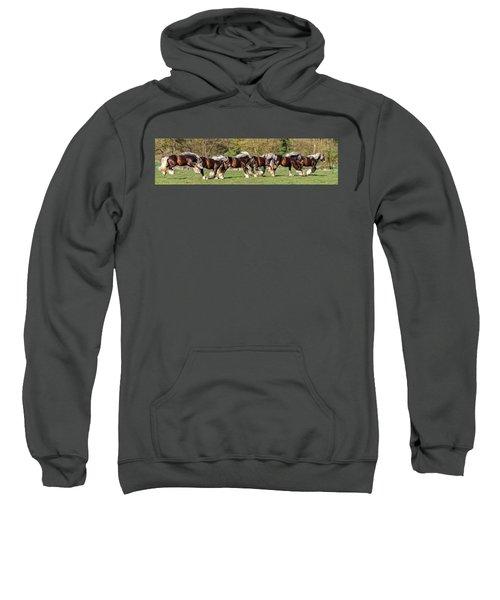 Dance Of The Gypsy Sweatshirt